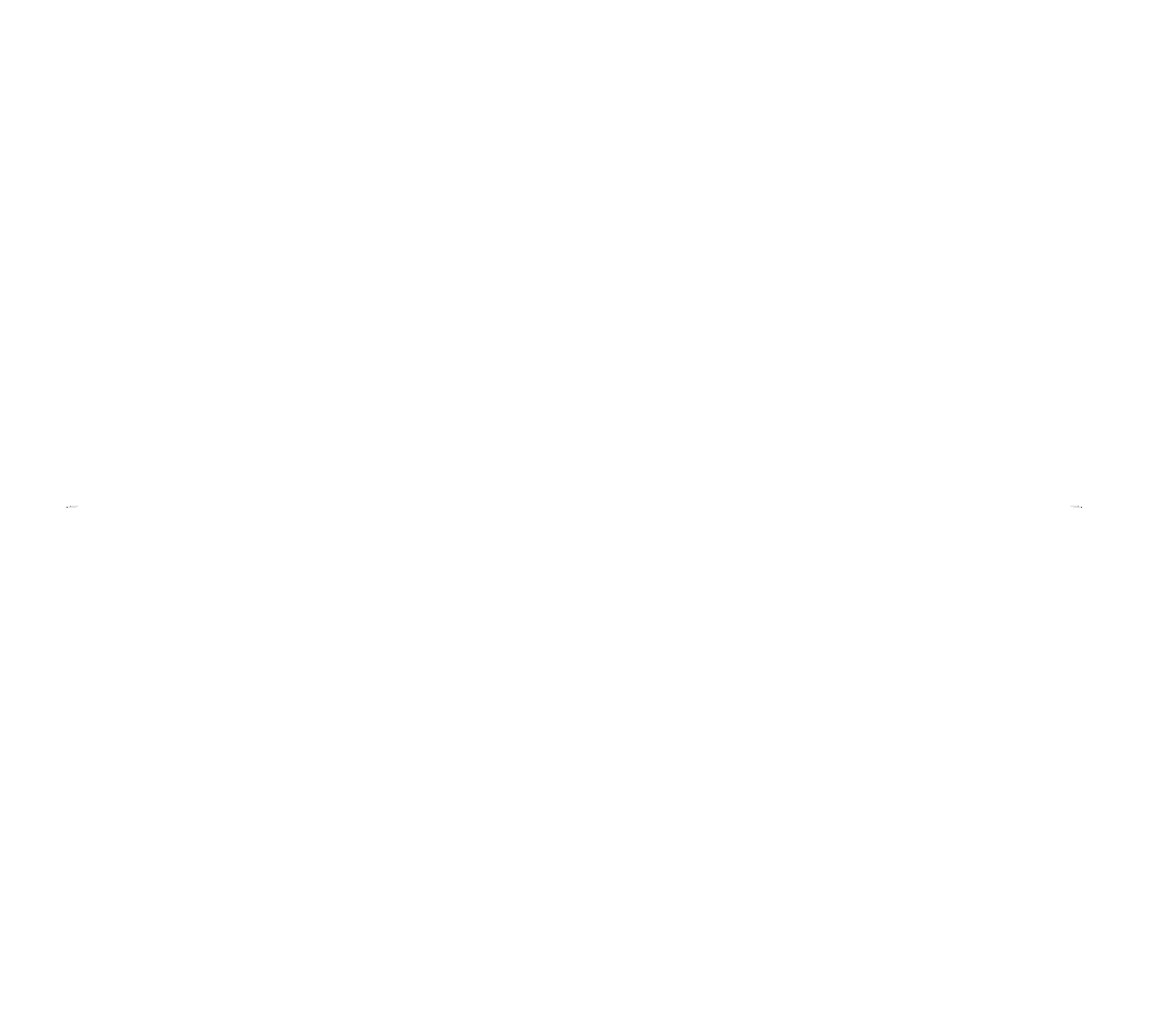 Earth Wholefoods